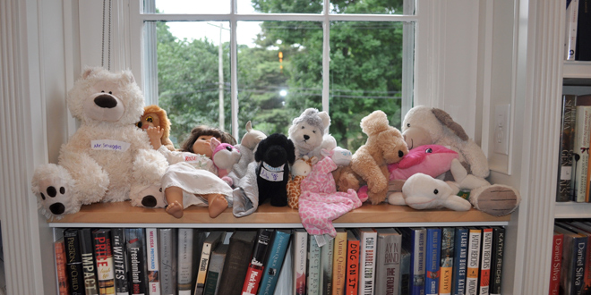 Stuffed Animal Sleepover 2017