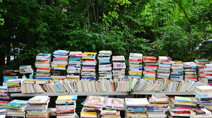Book Sale At IPP Craft Show August 11